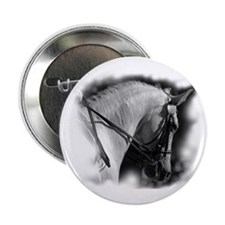 "Dressage horse 2.25"" Button (10 pack)"