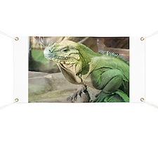 Iguana Banner
