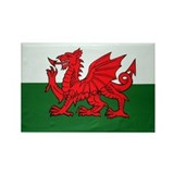 Wales Flag Rectangle Magnet (100 pack)
