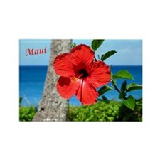 Red Hibiscus Rectangle Magnet