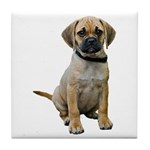 Puggle Tile Coaster