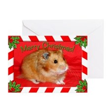 Merry Christmas Hamster Greeting Cards (Pk of 10)