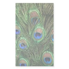 Peacock Feathers Rectangle Decal