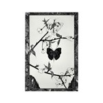 The Butterfly Rectangle Magnet (100 pack)