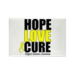 HopeLoveCure Sarcoma Rectangle Magnet (10 pack)