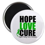 HopeLoveCure KidneyCancer Magnet