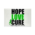HopeLoveCure KidneyCancer Rectangle Magnet (10 pac
