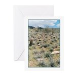 Stepping Stones Greeting Cards (Pk of 10)