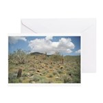 Cactus Pastoral Greeting Cards (Pk of 10)