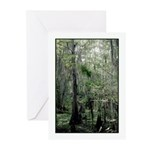 Swamp Serenity Greeting Cards (Pk of 10)