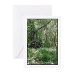 Primordial Landscape Greeting Cards (Pk of 10)