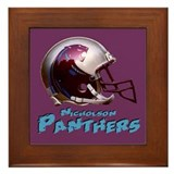 Panthers Framed Tile