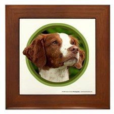 Brittany Framed Tile