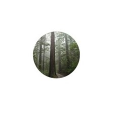 Redwood Forest Fog Mini Button (10 pack)