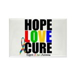 HopeLoveCure Autism Rectangle Magnet (100 pack)