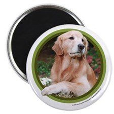 "Golden Retriever Art 2.25"" Magnet (10 pack)"