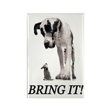 Bring It! Rectangle Magnet (10 pack)