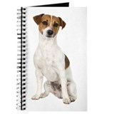 Jack Russell Terrier Journal