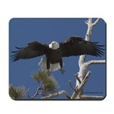"""Eagle Pad"" Mousepad"