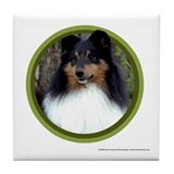 Tri-Color Sheltie Art Tile Coaster