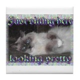 Funny Ragdoll cat art Tile Coaster