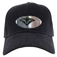 Blue Swallowtail Black Baseball Cap
