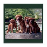 Toller Family Tile Coaster
