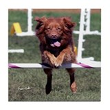 Toller jumping Tile Coaster