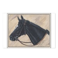 Sunday Silence Postcards (Package of 8)