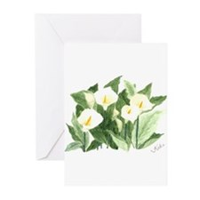 Calilies Greeting Cards (Pk of 20)