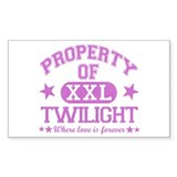 XXL Pink Rectangle Sticker 10 pk)