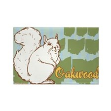 """Ohio White Squirrel"" Rectangle Magnet (10 pack)"