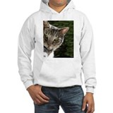 Kitty Cat Jumper Hoody