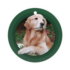 Golden Retriever Green Round Ornament