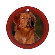 Toller Art Ornament (Round)