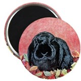 "Holland Lop Rabbit 2.25"" Magnet (10 pack)"