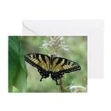 Dickson Scenery Greeting Cards (Pk of 10)