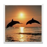 Two Dolphins Tile Coaster