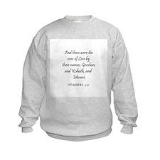 NUMBERS  3:17 Sweatshirt
