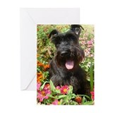 Black Miniature Schnauzer Greeting Cards (Pk of 10