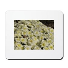 White Mums Mousepad