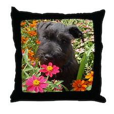 Black Miniature Schnauzer Throw Pillow