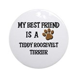 My best friend is a TEDDY ROOSEVELT TERRIER Orname