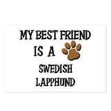 My best friend is a SWEDISH LAPPHUND Postcards (Pa