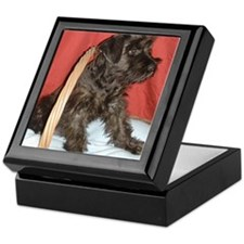 Black Miniature Schnauzer Keepsake Box