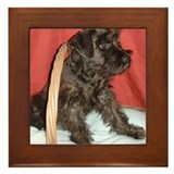 Black Miniature Schnauzer Framed Tile
