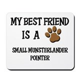 My best friend is a SMALL MUNSTERLANDER POINTER Mo