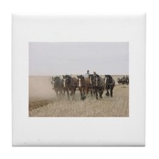 Cute Shire horse Tile Coaster
