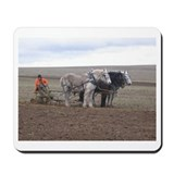 Cool  draft mules Mousepad