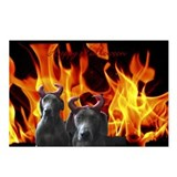 Cute Weimaraner Postcards (Package of 8)